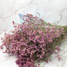 進口乾燥天然水晶草-乾燥花圈 乾燥花束 ...