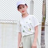 女童t恤短袖中大童上衣童裝2020兒童夏季新款洋氣寬鬆女孩薄款潮T TR1416『俏美人大尺碼』