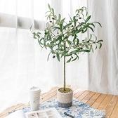 阿楹 仿真橄欖樹北歐室內花假植物盆栽ins風民宿綠植裝飾網紅擺件 3C優購