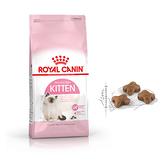 寵物家族-法國皇家K36幼母貓飼料2kg(4-12個月幼貓適用)
