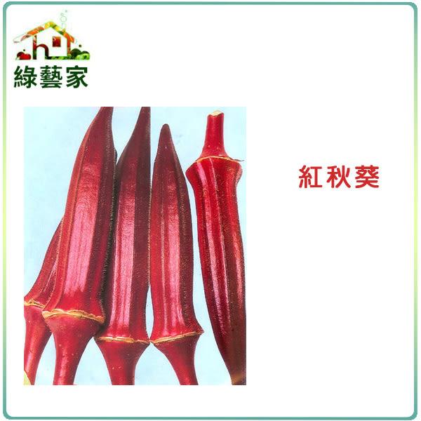 【綠藝家】G35.紅秋葵種子30顆