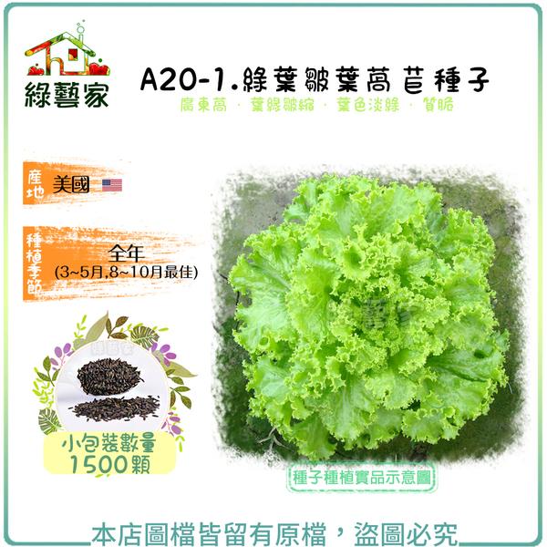【綠藝家】A20-1.綠葉皺葉萵苣種子1500顆