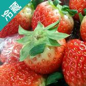 韓國草莓/盒(250g±5%/盒)【愛買冷藏】