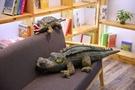 【80公分】仿真鱷魚玩偶 逼真鱷魚抱枕 聖誕禮物交換禮物 生日禮物 攝影道具
