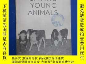 二手書博民逛書店SAVING罕見YOUNG ANIMALA ADRIL 1943