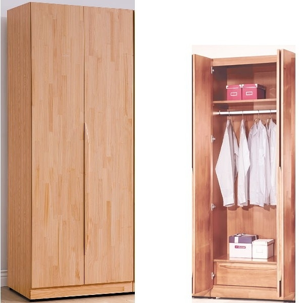 衣櫃 衣櫥 TV-148-3 羅本北歐2.5尺單吊衣櫥【大眾家居舘】