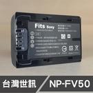 SONY FV50 FV-50 台灣世訊 日製電芯 副廠鋰電池 CX370 CX430 XR550 (一年保固)