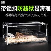 爬蟲箱飼養盒蜥蜴守宮角蛙蜘蛛寄居蟹迷你寵物蛇養殖籠爬寵飼養箱  享購