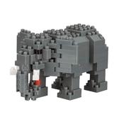 《 Nano Block 迷你積木 》 NBC_295非洲草原象╭★ JOYBUS玩具百貨