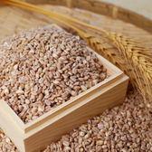 生產追溯大城小麥1kg - 最夯的米~100%純台灣小麥 免浸泡,炊煮快速方便