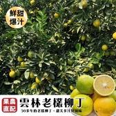每斤54元起【果農直送】雲林老欉柳丁X5台斤±10%含箱重/箱
