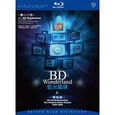 Blu-ray藍光鑑碟BD