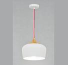 燈飾燈具【燈王的店】現代工業風吊燈 ☆ (10820/H1)