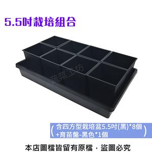 5.5吋栽培組合(含四方型栽培盆5.5吋*8個+育苗盤*1個)育苗盤黑色有孔