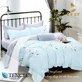 天絲床包兩用被四件式 雙人5x6.2尺 蘭悠之音 100%頂級天絲 萊賽爾 附正天絲吊牌 BEST寢飾