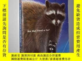 二手書博民逛書店Raccoons罕見on the Roof (Animal Ar