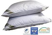 Betten Hofzen 【日本代購】高級羽毛枕 2件套枕芯50x50cm 環保認證 - 德國產