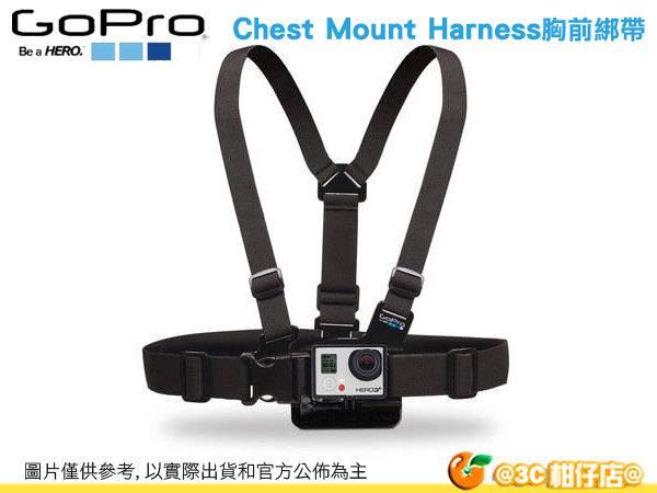 GoPro GCHM30 配件 Chest Mount Harness 胸前背帶 綁帶 HERO 2 HERO3+ HERO 3 GoPro3