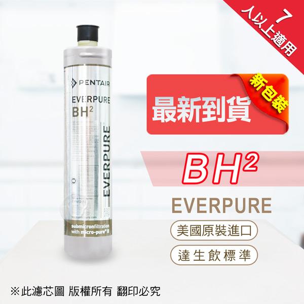 水蘋果居家淨水~快速到貨~免運費~Everpure 美國原廠平行輸入 BH2 濾心