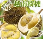 【果之蔬-全省免運】越南榴槤12KG±10%(3-4入)原箱X1