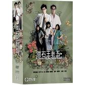 港劇 - 鑽石王老五DVD (全20集/5片) 吳啟華/藍潔瑛