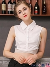 熱賣假領子 白色純棉假領子女百搭假領2021秋冬新款假襯衫多功能裝飾領打底 coco