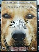 挖寶二手片-P03-142-正版DVD-電影【為了與你相遇】-丹尼斯奎德(直購價)