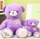 【80公分】薰衣草熊 浪漫紫色熊娃娃 療癒系抱抱熊 泰迪熊 抱枕 絨毛玩具 聖誕節交換禮物