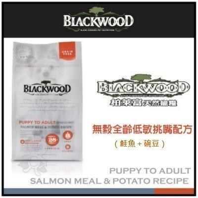 《48HR快速出貨》*KING*《柏萊富》blackwood 無穀低敏挑嘴犬糧 鮭魚加豌豆 5磅