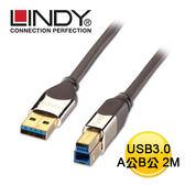 LINDY 林帝 41612 - USB3.0 A公 to B公 傳輸線 2M