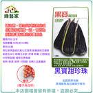 【綠藝家】大包裝G26.黑寶甜珍珠糯玉米...