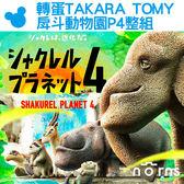 Norns【轉蛋TAKARA TOMY戽斗動物園P4 整組】日本扭蛋公仔戽斗星球 熊貓之穴 厚到星球 扭蛋星球 第4彈