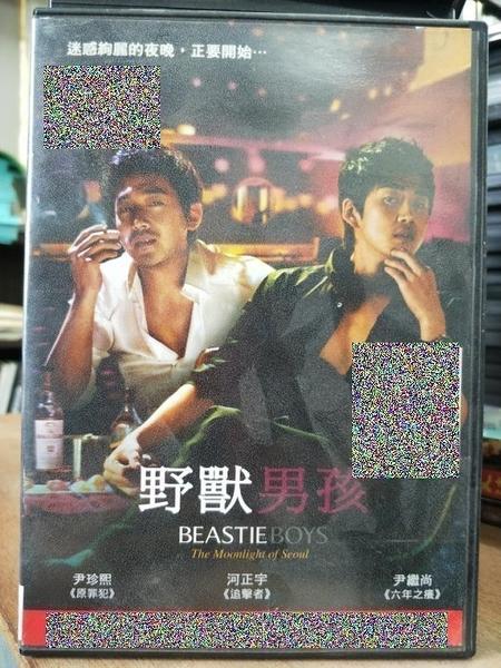 挖寶二手片-T01-201-正版DVD-韓片【野獸男孩】-河正宇 伊珍熙(直購價)