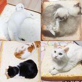 寵物坐墊貓咪用品狗墊狗墊子可拆洗夏天吐司坐墊狗窩面包寵物墊貓窩貓墊【米拉生活館】