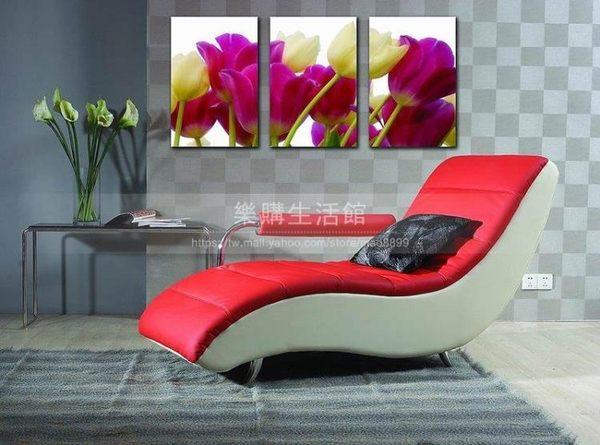 客廳裝飾壁畫/無框畫-花卉【30*40*0.9三幅】LG-2511002
