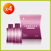 【SHINJI信吉】白藜蘆醇活妍凍 4盒(12包/盒)|啟動美肌模式 由內而外美豔動人