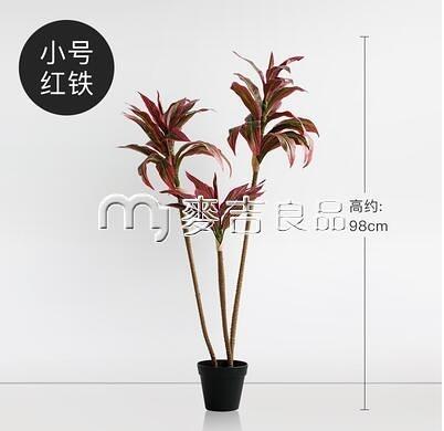仿真盆栽ladylike北歐仿真植物盆栽尤加利樹落地假綠植裝飾大型桉樹 麥吉良品YYS