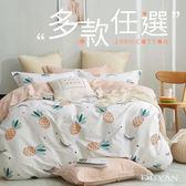 100%精梳純棉雙人加大四件式鋪棉兩用被床包組-多款任選 台灣製 雙人加大床包純棉 雙人兩用被