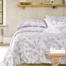 【Jenny Silk名床】河蔚.100%天絲.標準雙人鋪棉床包組兩用鋪棉被套全套