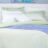 HOLA (組)雅緻天絲素色雙人床包組 輕碧