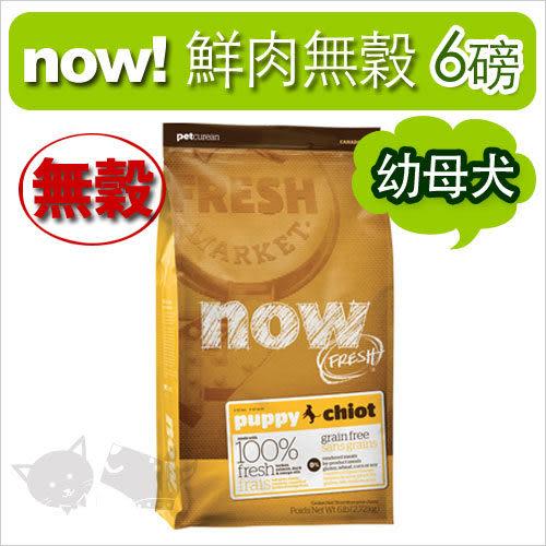 [寵樂子]《NOW!》Fresh鮮肉無穀天然糧-幼犬配方 6磅 / 狗飼料