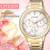【公司貨5年延長保固】CITIZEN FD2032-55A 光動能女錶  熱賣中!