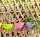 預購-塑料吊掛式盆栽