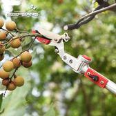伸縮3米高枝剪高空剪 果樹摘果器龍眼采果剪