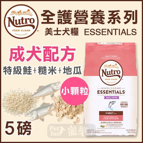[寵樂子]《Nutro美士》全護營養系列-成犬配方(特級鮭魚+糙米地瓜)-小顆粒5LB / 狗飼料