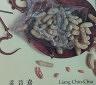 二手書R2YBb 103年10月《梁晉嘉 Liang Chin-Chia》201