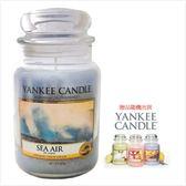 YANKEE CANDLE 香氛蠟燭-海的氣息(買623g送104g)