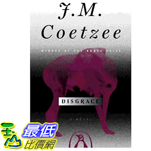 2019 美國得獎書籍 Disgrace: A Novel