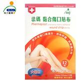 【Fe Li 飛力醫療】砝碼 黏合傷口貼布/美容膠帶(大傷口)