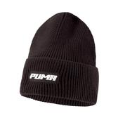 Puma Trend 毛帽 深棕色 毛球 毛帽 男 女 毛帽 保暖 聖誕禮物 運動毛帽 02285001